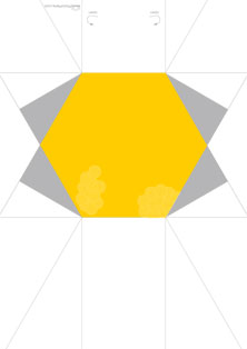 CD_case_Hexagon_A4_Yellow.jpg